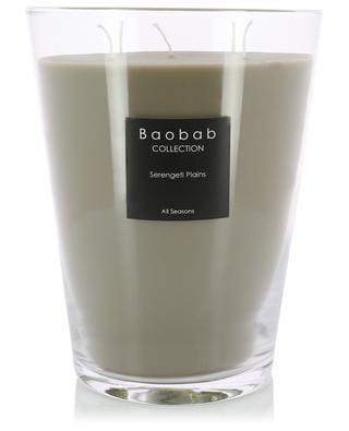 Bougie parfumée Serengeti Plains Max 24 BAOBAB