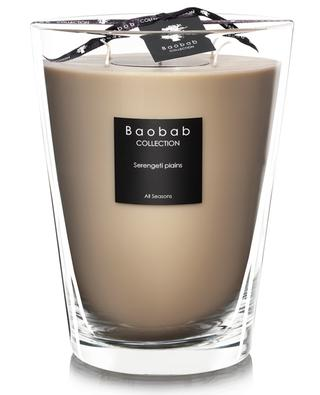 Serengeti Plains Max 24 scented candle BAOBAB