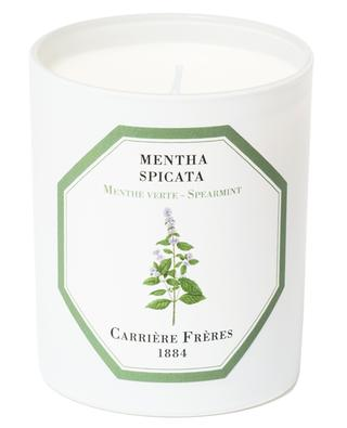 Bougie parfumée Menthe Verte CARRIERE FRERES