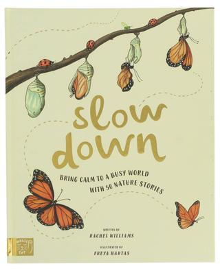 Bilderbuch Slow Down ABRAMS & CHRONICLES BOOKS