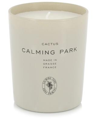 Cactus scented candle CALMING PARK